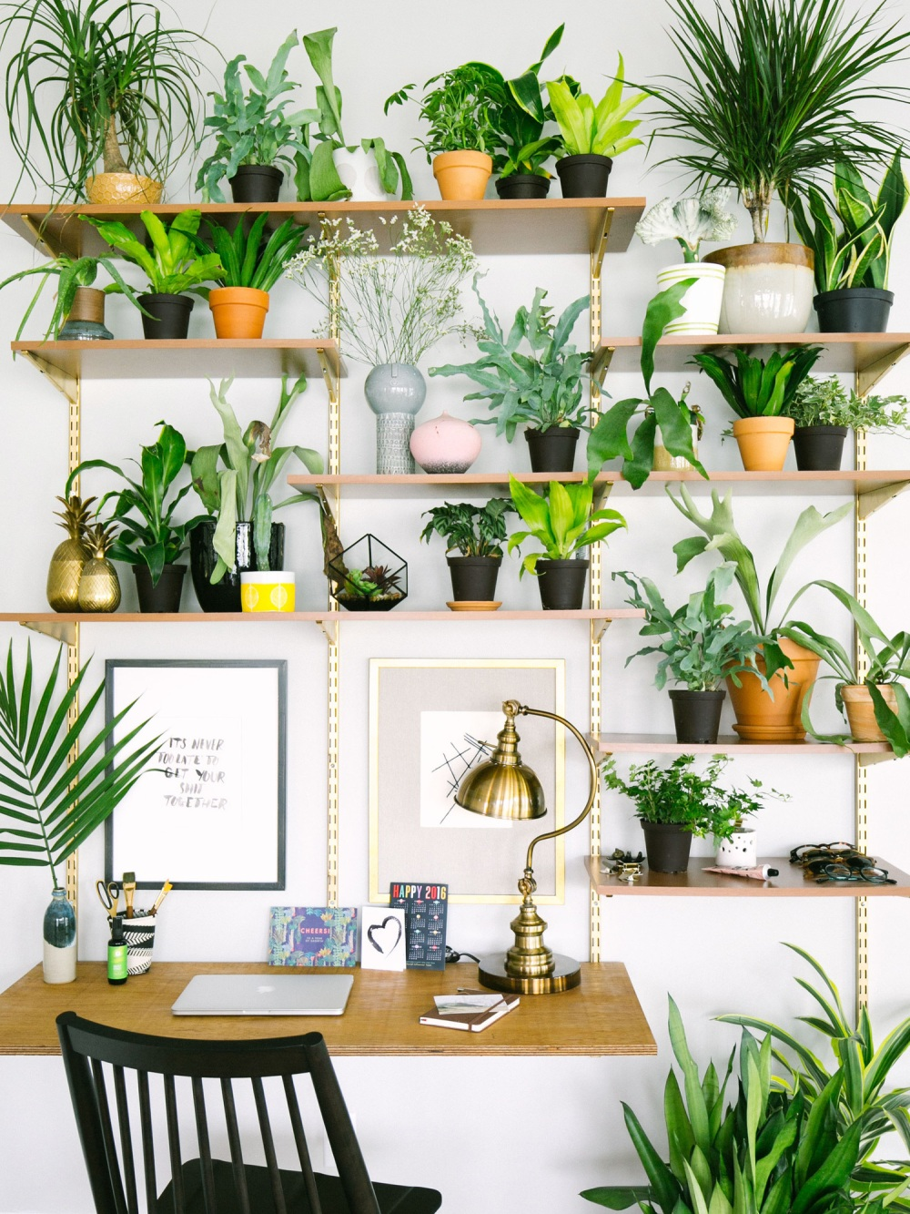 Create a vertical garden on the wall above your desk to let nature in.